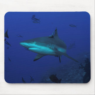 Reef Shark Mouse Pad