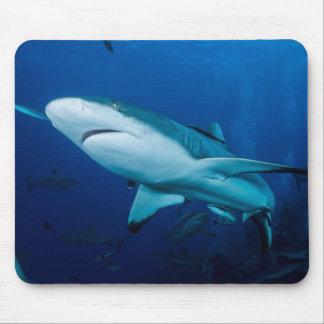 Reef Shark Mousepad