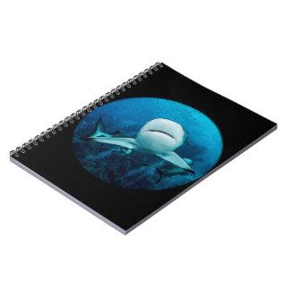 Reef Shark Notebook