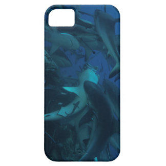 Reef Shark on the Great Barrier Reef iPhone SE/5/5s Case