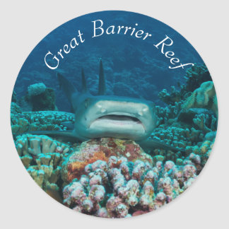 Reef Shark on the Great Barrier Reef Round Sticker