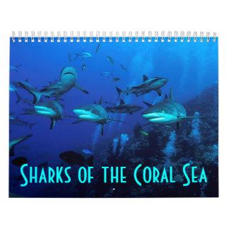 Reef Sharks Great Barrier Reef Coral Sea Calendar