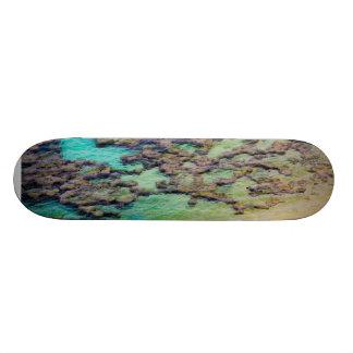 Reef Skateboard