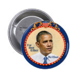 Reelija a Obama Pins