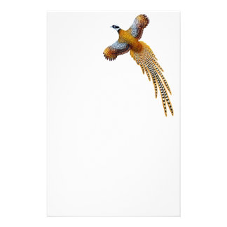 Reeves Pheasant Stationery
