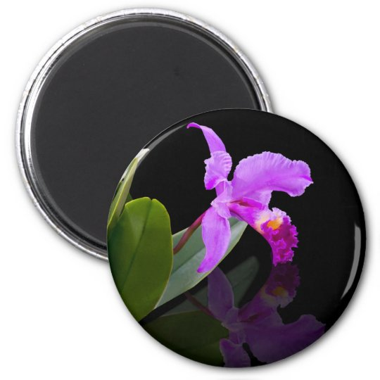 Reflected Beauty Orchid  Magnet