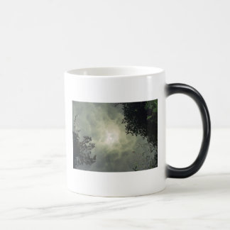 Reflected Mug