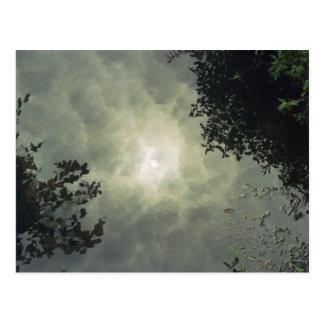 Reflected Postcard