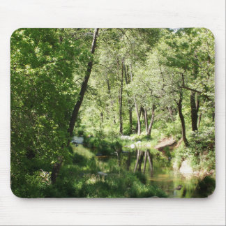 Reflected Trees Mouse Pad