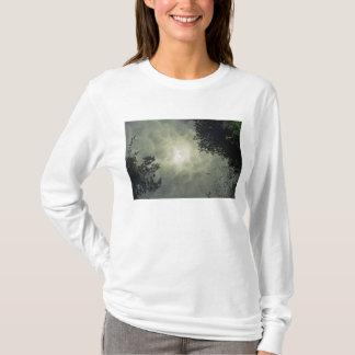 Reflected Women's T-Shirt