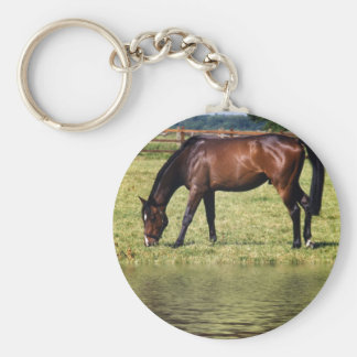 Reflecting Bay Keychain