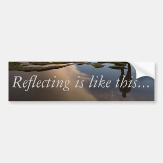 Reflecting - Bumper Sticker