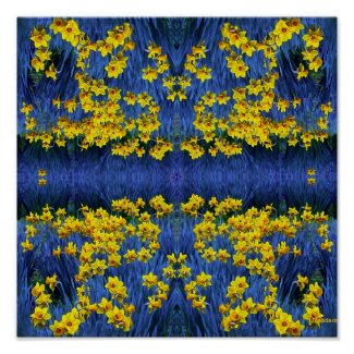 Reflecting Daffodils print