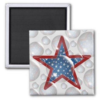 Reflecting Freedom Magnet