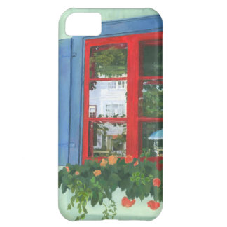 Reflecting Panes Case For iPhone 5C