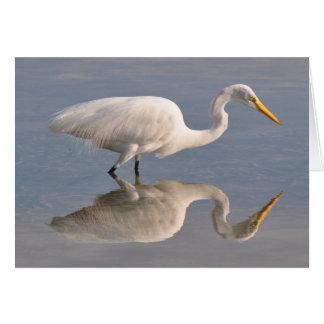 Reflecting White Heron Card