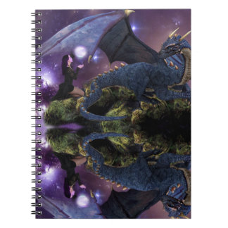 Reflection a Dragon Pool Spiral Notebooks