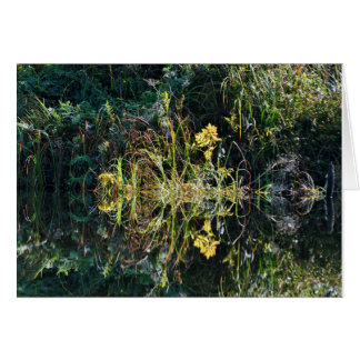 Reflection at Loomis Lake Stationery Note Card