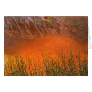 Reflection in Pool Canyon | Glen Canyon, UT Card