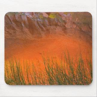 Reflection in Pool Canyon   Glen Canyon, UT Mouse Pad