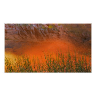 Reflection in Pool Canyon | Glen Canyon, UT Poster