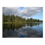 Reflection Lake at Mount Rainier Post Cards