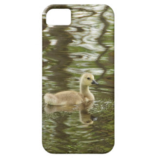 reflection of a baby goose iPhone 5 covers