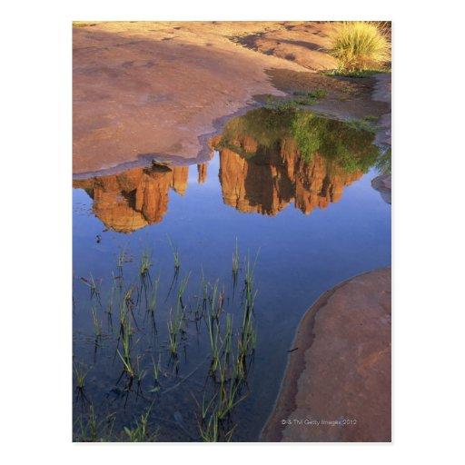 Reflection of Cathedral Rock , Sedona , Arizona Postcard