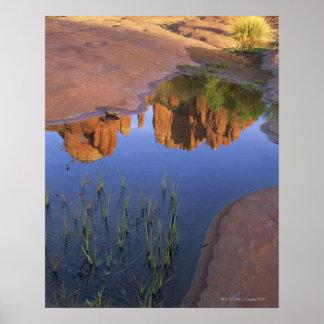 Reflection of Cathedral Rock , Sedona , Arizona Poster
