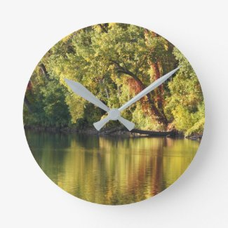 Reflection of nature clock