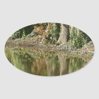 Reflection of Three Trees Oval Sticker