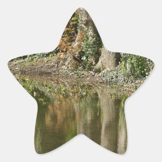 Reflection of Three Trees Star Sticker