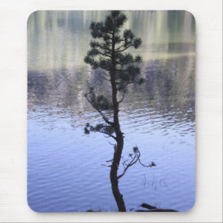 Reflection on the water mouse pad
