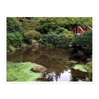 Reflection Pool Postcard