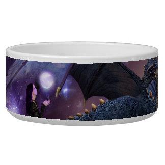 Reflections a Dragon Pool Bowl