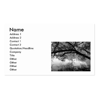 Reflections Double-Sided Standard Business Cards (Pack Of 100)