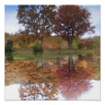 Reflections Canvas Poster
