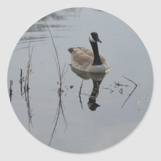 Reflections Classic Round Sticker
