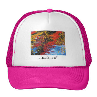 Reflections - hat