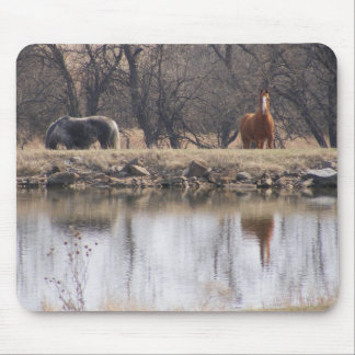 Reflections: Horses by a Pond Mouse Pad