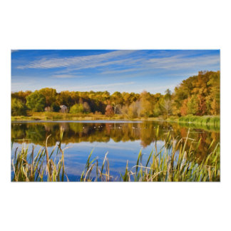 Reflections in a Lake Poster or Print