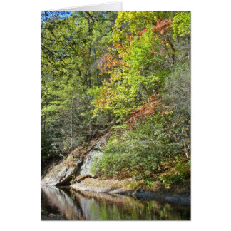 Reflections in the Swimming Hole Card