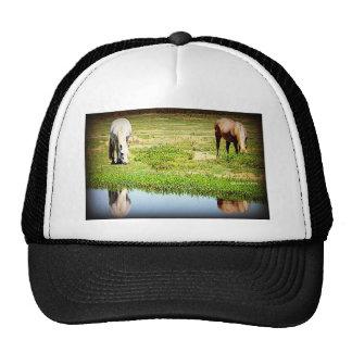 Reflections in the Water - Horses Mesh Hat