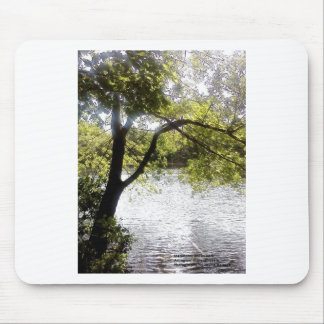 Reflections in the woods mouse pad