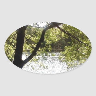 Reflections in the woods oval sticker