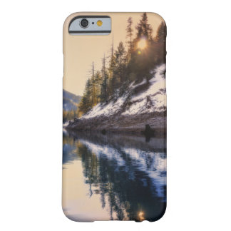 Reflections of a Dream phone case
