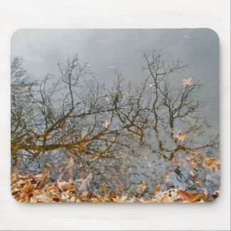 Reflections of Autumn Mousepad
