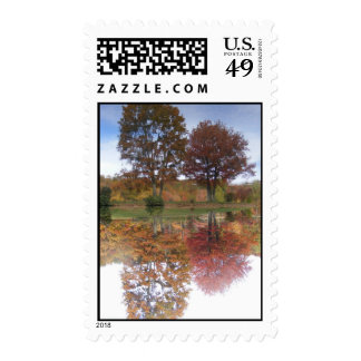 Reflections of Fall Postage