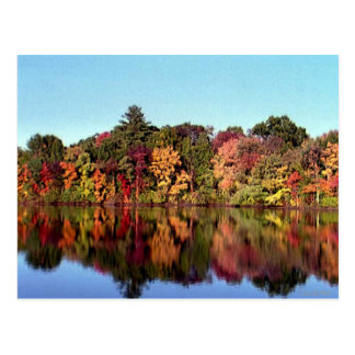 Reflections of Fall Postcard