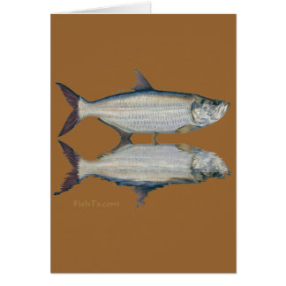 Reflections of fish card